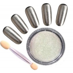 01 Mirror Powder 2gr