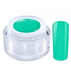 168 Caribic Sea - Ng Standard Color gel 4,5gr