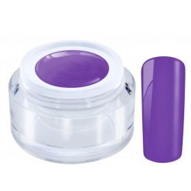 091 Lovly Violet - Ng Standard Color gel 5ml