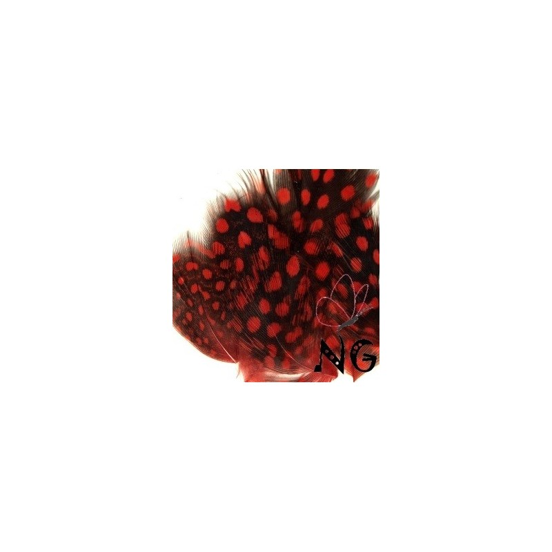 Nail Art Feather Red