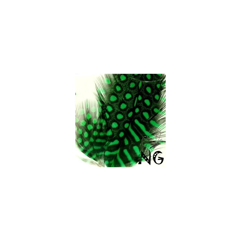 Nail Art Feather Green