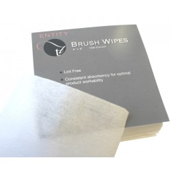 Entity Brush Wipes 4x4 100st.