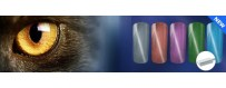 Cat Eye Magnet gel